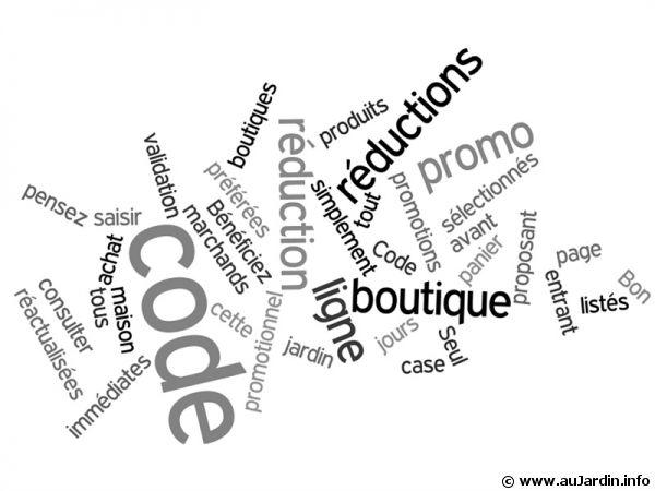 Code promo et Bon de réduction