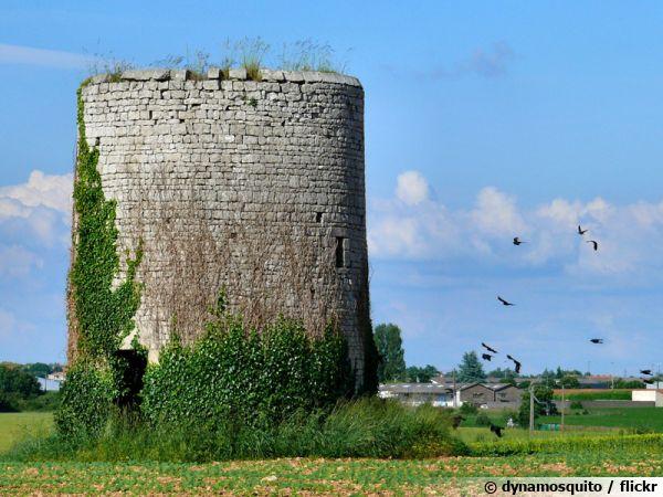 Ancien pigeonnier à Niort