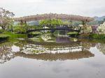 Ashikaga Flower Park, le parc aux glycines