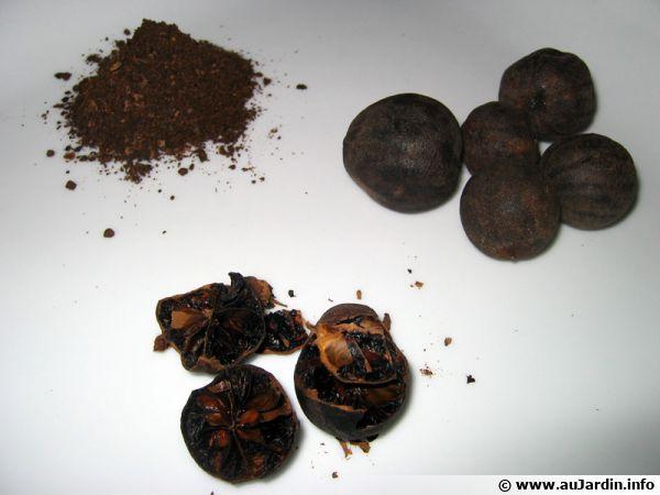 Un citron noir nommé 'Loumi', en pourdre, en morceaux ou entier...