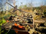 Les déchets verts et l'exportation de la biomasse