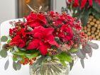 Poinsettia en bouquet au salon