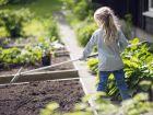 A vos râteaux de jardin
