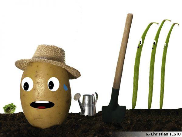 Travailler pour des haricots