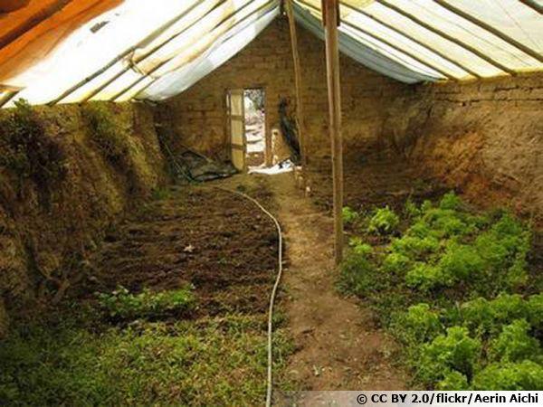 Le walipini, une serre enterrée pour cultiver toute l'année