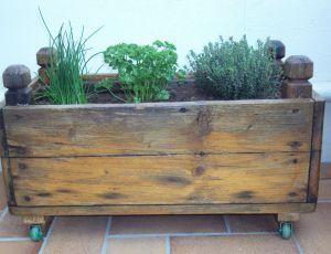 Jardiniere d aromates par JULES VERNE