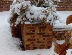 Pierris sous la neige par CLAUDINE