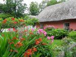 Dans un jardin en Irlande