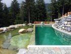 3e place, Autriche – Baignade Ecologique avec panorama alpin