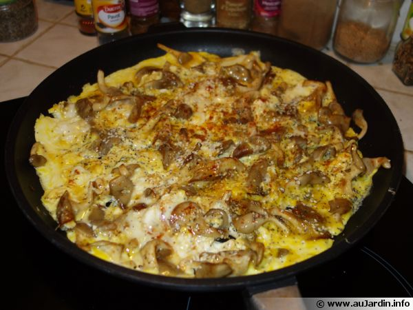 Omelettes aux pleurotes et aux deux graines recette de - Comment cuisiner les crevettes congelees ...