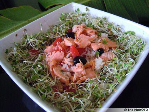 Salade de riz de la mer et sa couronne de graines germées