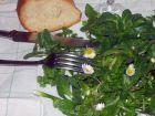 """Salade """"désherbage de la pelouse"""""""