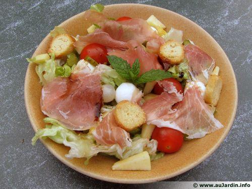 Salade d 39 t recette de cuisine for Eliminer les vers des salades