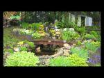 Les bassins de jardin