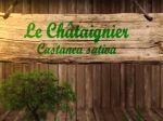 Châtaignier commun, Castanea sativa : fiche botanique