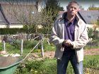 Comment cultiver la tomate ?