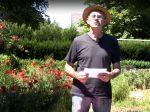 Comment planter et entretenir la pomme terre?