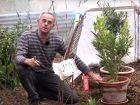 Comment protéger les plantes gélives sous serre ?
