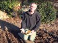 Comment semer des fèves ?