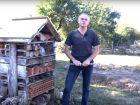 Construire votre hôtel à insectes
