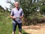 Comment entretenir le sol du potager ?