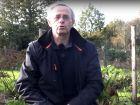 Que faire ou ne pas faire au jardin en hiver ?