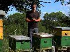 Le fonctionnement de la ruche