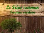 Frêne commun, Fraxinus excelsior : fiche botanique