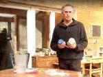 Germination et inventaire des graines