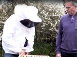 Quel matériel pour démarrer la ruche ?