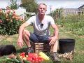 Le plaisir de la récolte des légumes du potager