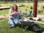 Comment planter des fleurs et des fraisiers dans une tour ?