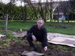 Préparer les cultures avec des engrais verts