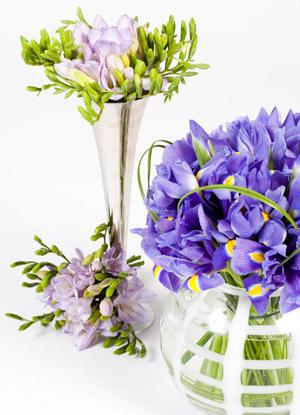 Célébrez les moments les plus heureux en téléchargeant un guide floral gratuitement