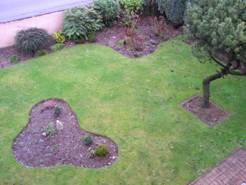 L\'élaboration de mon jardin au fil des saisons