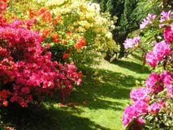Le jardin de Lostanges