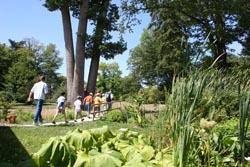 sur les traces de l'arbre des songes Arboretum national des Barres C.Vermillard