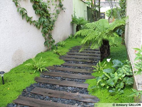 Amaury gallon des jardins de babylone suite - Comment poser des pas japonais ...