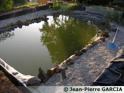 piscine naturelle: mise en eau