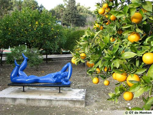 le jardin d 39 agrumes du palais carnol s 06. Black Bedroom Furniture Sets. Home Design Ideas