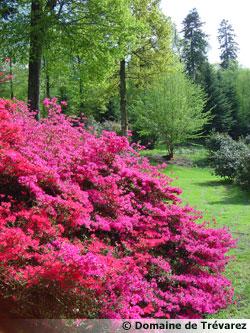 Domaine de tr varez les l ments remarquables du parc 29 for Jardin pittoresque