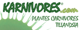Karnivores